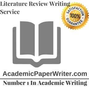 Academic writing literature review example